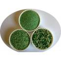 Quartz coloré mélangé vert chiné